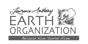 The_Earth_org