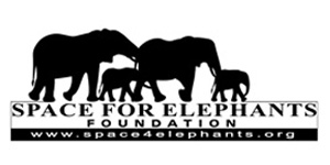 space_for_elephants2